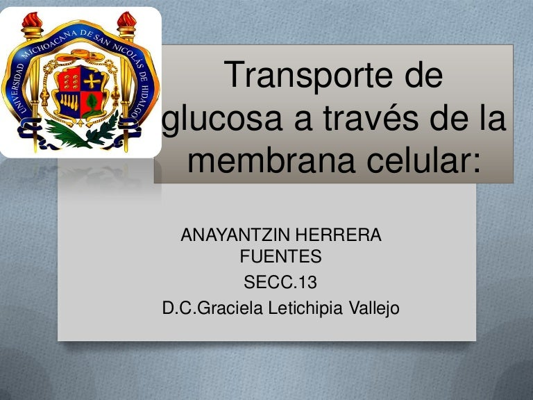 diabetes transportadora de glucosa