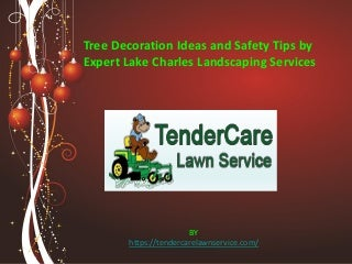 Tree decoration ideas and safety tips by expert lake charles landscaping services