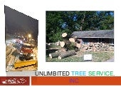 Tree Trimming Service in Columbia, MD