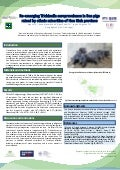 Re-emerging Trichinella seroprevalence in Ban pigs raised by ethnic minorities of Hoa Binh province