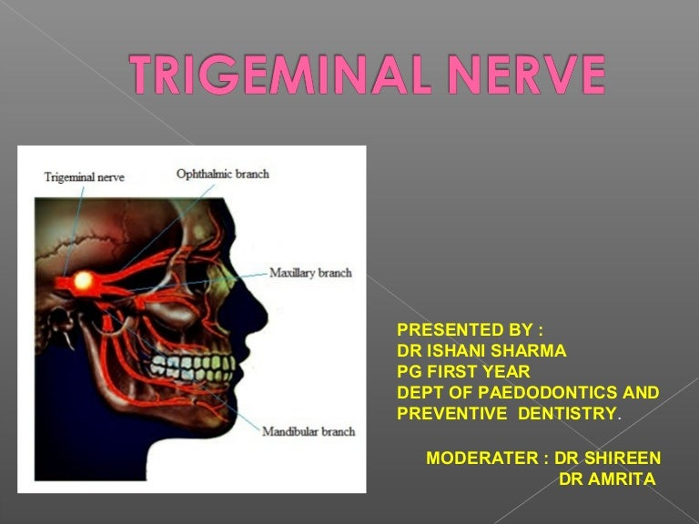 Trigeminal Nerve Max And Opthalmic Div