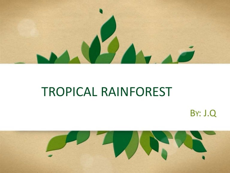 Tropical rainforest powerpoint template bellacoola tropical forest by jq powerpoints templates toneelgroepblik Image collections