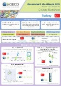 Government at a Glance 2013, Country Fact Sheet: Turkey