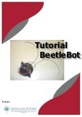 Tutorial Beetlebot