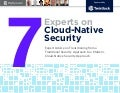 Twistlock: 7 Experts on Cloud-Native Security