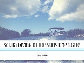 Tyler Sheff | Scuba Diving In The Sunshine State