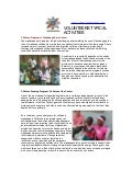 volunteer activities,  Volunteering Projects in Kenya