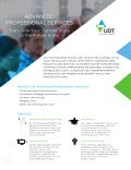 UDT - United Data Technologies - Professional Services