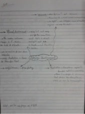 Ahmed Hashim Rocketry Notes