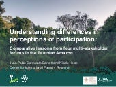 Understanding differences in perceptions of participation: Comparative lessons from four multi-stakeholder forums in the Peruvian Amazon