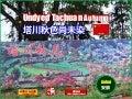 Undyed Tachuan Autumn (塔川秋色尚未染)