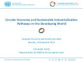 UNIDO: Circular Economy and Sustainable Industrialization Pathways in the Developing World