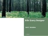 Bex Query Designer Variables | http://sapdocs.info