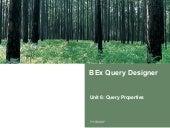 Bex Query Designer Query Properties | http://sapdocs.info