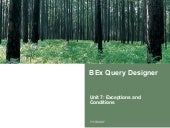 Bex Query Designer Exceptions And Conditions  | http://sapdocs.info
