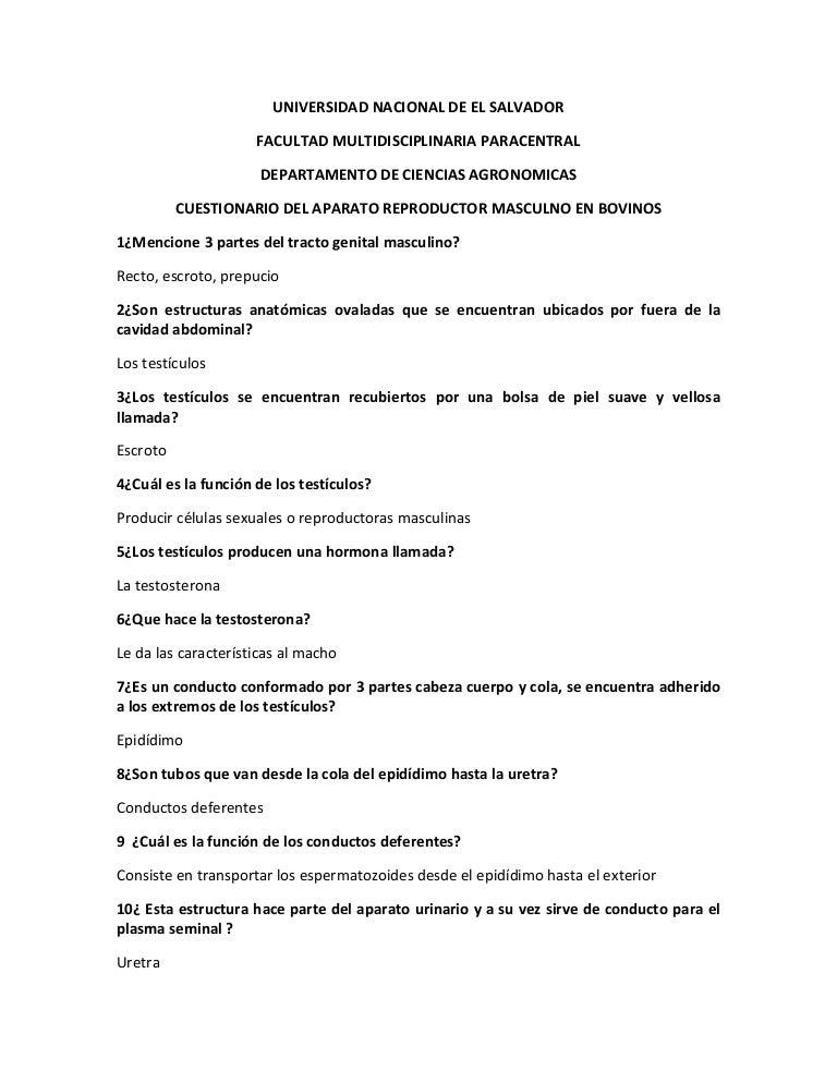 CUESTIONARIO DE LA ANATOMIA DEL APARATO REPRODUCTOR MASCULINO EN BOVI…