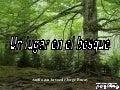 Un lugar en_el_bosque-33602