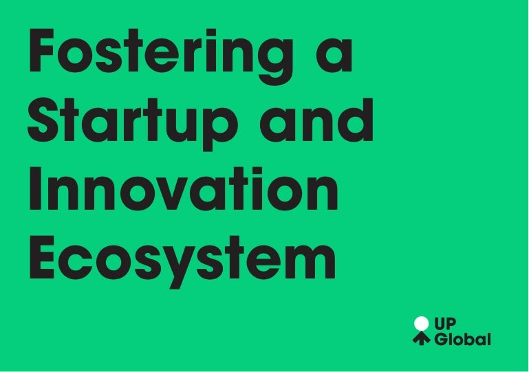 Fostering a Startup and Innovation Ecosystem