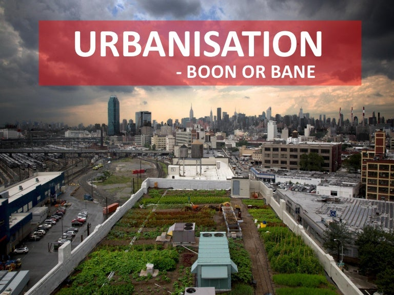 urbanisation boon or bane