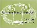 UTI- Urinary Tract Infection