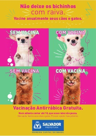 Vacina antirrabica 2015
