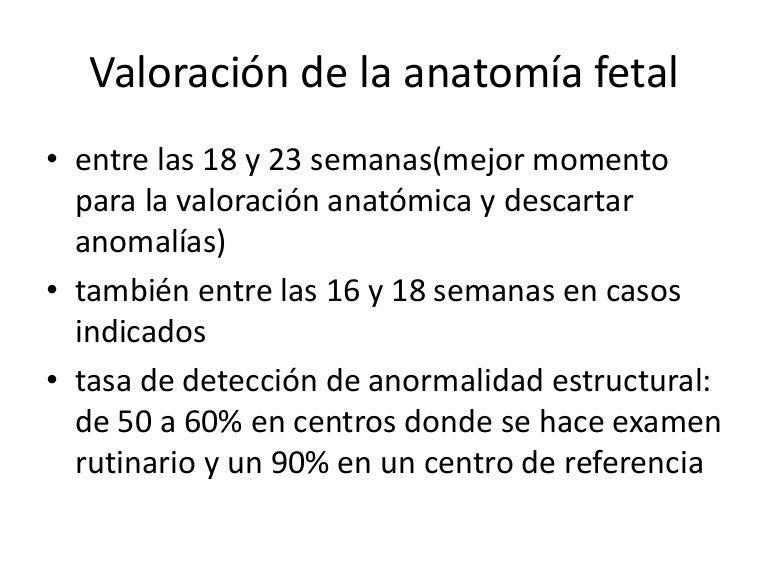 Valoración de la anatomía fetal