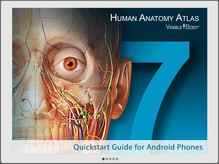 Human Anatomy Atlas 7 Quickstart Guide For Android Phone