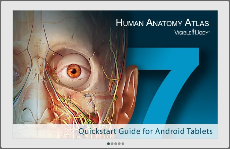 Human Anatomy Atlas Quickstart Guide For Android Tablet