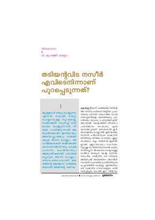 velam-100128143409-phpapp01-thumbnail-3.
