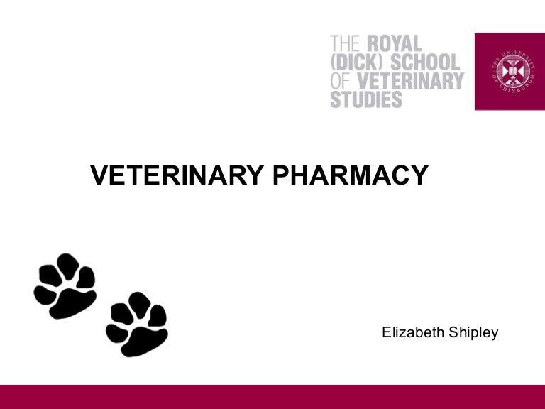 Download 81 Background Ppt Veterinary HD Paling Keren
