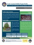 Cook County/Village of Summit EECBG Project Profile