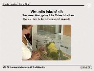 Virtuális inkubáció gyulay tibor mta tm konf_171025