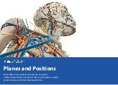 [A&P eBook] Planes and Positions | Visible Body
