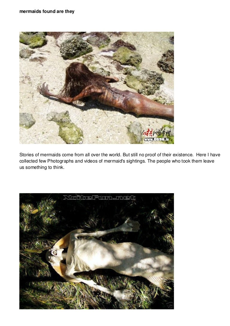 Are mermaids real 5 real cases of mermaid sightings - Real Mermaids Found Discovery Channel