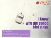 I know why the caged bird sings: Human rights issues in mental health systems