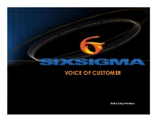 Define phase- Voice of Customer