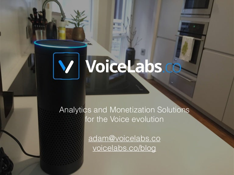 """Résultat de recherche d'images pour """"voicelabs coo"""""""