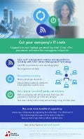 Cut your company's IT costs- Infographic