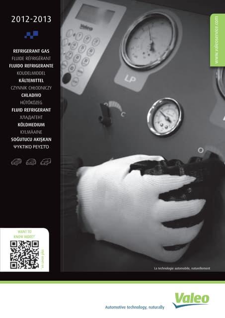 Valeo Refrigerant Gas 2012-2013 poster 955601