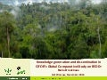 Knowledge generation and dissemination in CIFOR's Global Comparative Study on REDD+