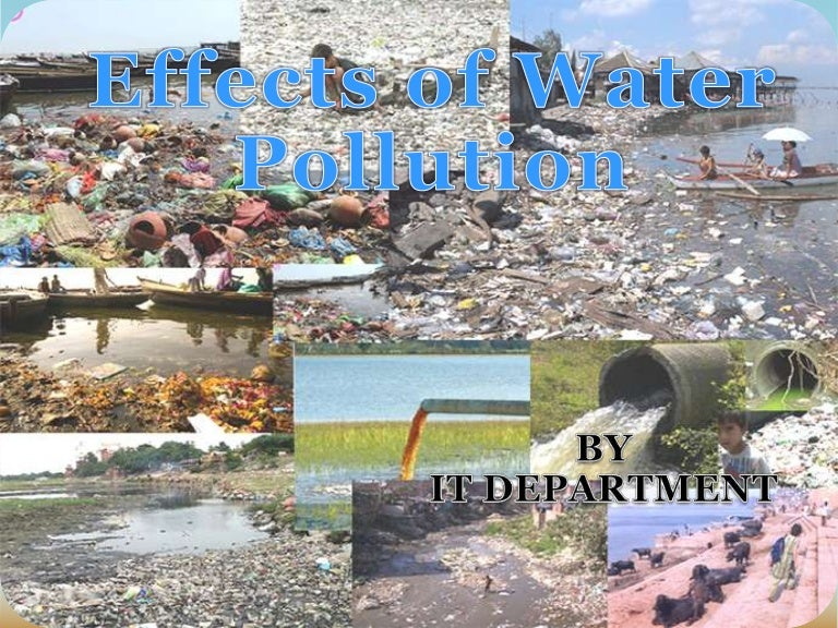 Essay of pollution of water