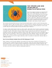 The Spiders and Web Crawlers of Website Optimization