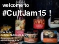 Welcome to Culture Jam 2015!