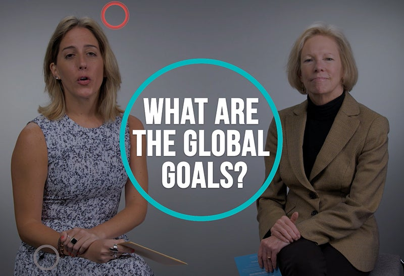 What are the Global Goals