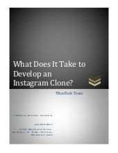 What does it take to develop an instagram clone