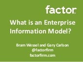 What is an Enterprise Information Model?