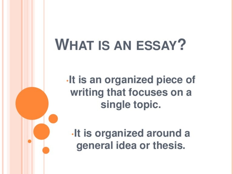 What Is An Essay
