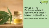 What is the endocannabinoid system and does it make us healthier