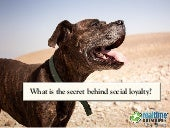 What is the Secret behind Social Loyalty