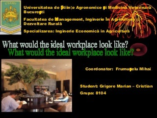 What would the ideal workplace look like? Grigore Marian